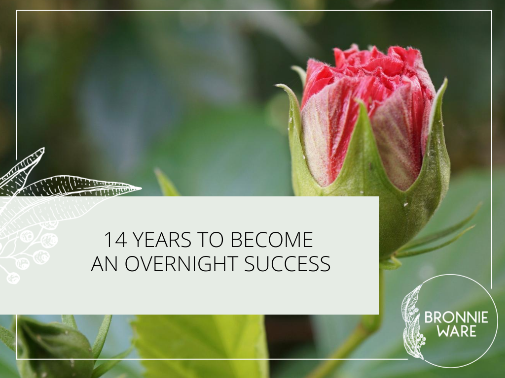 14 years to become an overnight success Bronnie Ware
